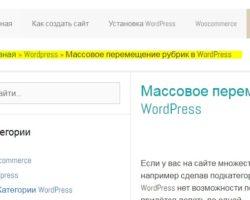 Как добавить хлебные крошки (breadcrumbs) для сайта на WordPress